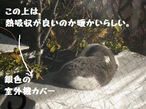 かばああったか (1).jpg