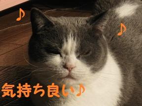 きもちよいよい (2).JPG