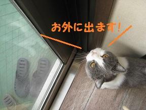くわぁ (1).jpg