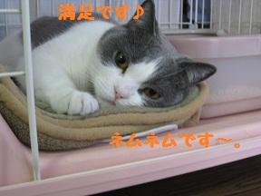 こっちきてね (4).jpg