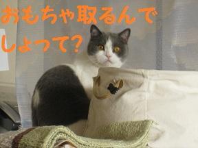 ざんねん、ねん (2).jpg
