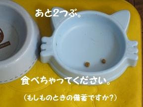 すっきぐい (4).jpg