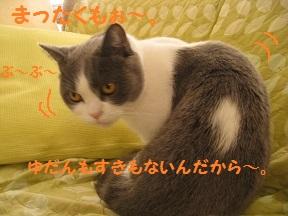 つまみな (4).jpg