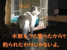 べつにそうじゃない (3).jpg