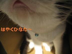 ぼくぼっくう (3).jpg