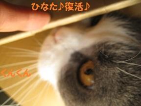 ぼくぼっくう (4).jpg