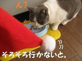 めりくり2013 (1).jpg