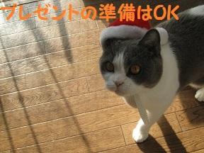 めりくり2013 (2).jpg