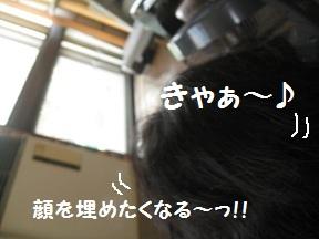 もうぅぅ (3).jpg