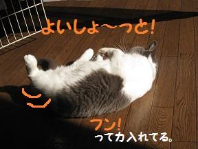 よいしょ1 (4).jpg