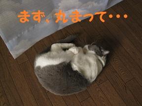 れろ~、、 (1).jpg