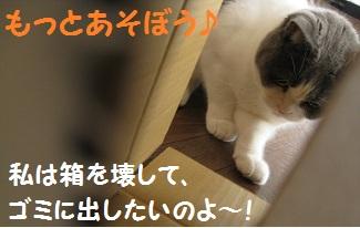 わぁ~びっくり (4).JPG