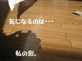 わたしのかげ (3).jpg