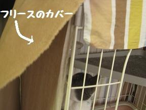 冬ばーじょん (2).jpg
