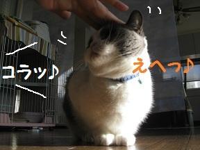 萌えたい? (4).jpg