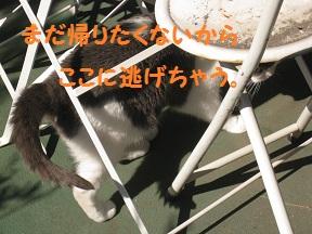 IMG_1349.jpg