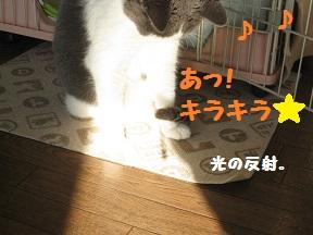 IMG_4014.jpg