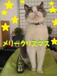 IMG_4138~1.jpg