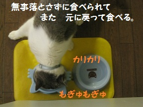 IMG_6958.jpg