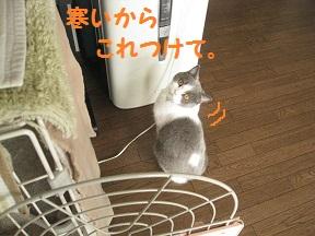 IMG_7220.jpg