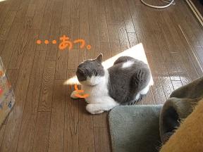 sankaku (4).jpg