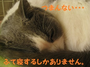 tsumaran (3).jpg