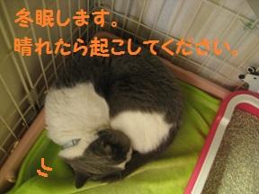 tsumaran (4).jpg