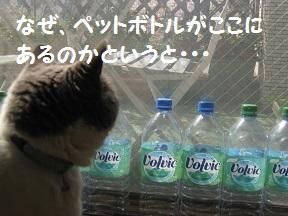 wakaru (1).jpg