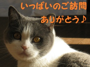 ありがとっと (3).jpg