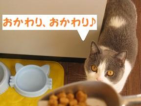 おかわ~り (4).jpg