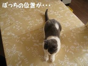 おなおし (3).jpg