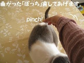 おなおし (4).jpg