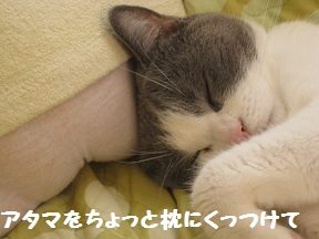 おばけ~ (2).jpg