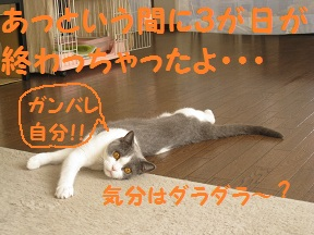 がんばれじぶん.jpg