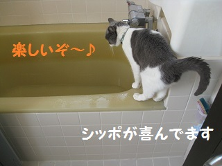 ぐるぐるう (1).jpg