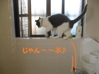 ぐるぐるう (3).jpg