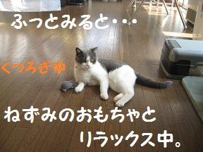 じゃぁ~ね (1).jpg