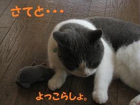 じゃぁ~ね (2).jpg