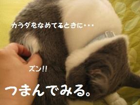 つまみな (0).jpg