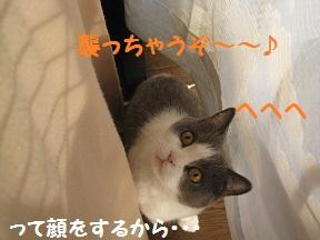にげちゃ (2).jpg
