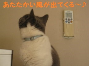 ははっけん (2).jpg