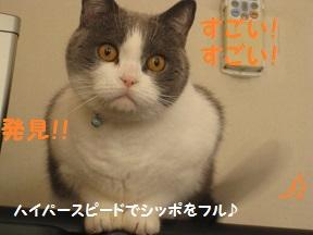 ははっけん (3).jpg