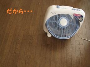 まだあちゅい (2).jpg