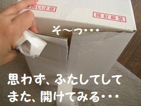 わぁ~びっくり (2).JPG