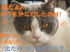 寒いよね (4).jpg