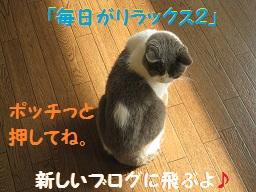 IMG_4320.jpg