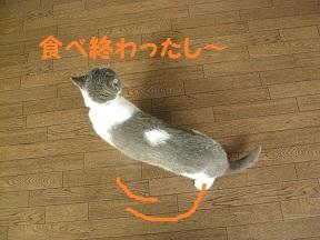 IMG_6808.jpg