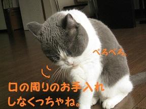IMG_6813.jpg