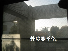 IMG_6979.jpg